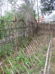 Fence from Thai side of the border